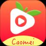 草莓app下载汅api免费站长统计